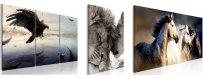 Kuvat mailman eri eläimistä, erilaiset eläinaiheiset Sisustustaulut, Canvas printtitaulut.  Ilmainen toimitus ja maksa Klarna laskulla kun olet saanut tilauksesi.