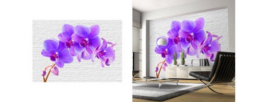 Orkidea Fototapetit saat Sisustutaulut.net kaupastamme nopealla toimituksella. Tutustu Kukka taustaseinä aiheisiin eri harrastuksista ja tilaa nyt! Ilmainen toimitus.