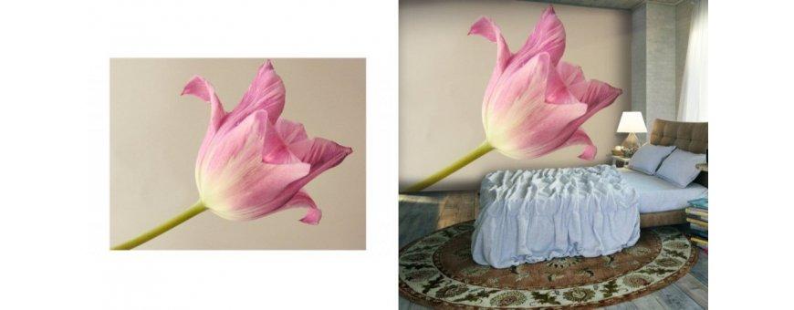 Tulppaani Fototapetit saat Sisustutaulut.net kaupastamme nopealla toimituksella. Tutustu Kukka taustaseinä aiheisiin eri harrastuksista ja tilaa nyt! Ilmainen toimitus.