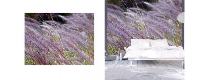 Niitty Fototapetit saat Sisustutaulut.net kaupastamme nopealla toimituksella. Tutustu Kukka taustaseinä aiheisiin eri harrastuksista ja tilaa nyt! Ilmainen toimitus.