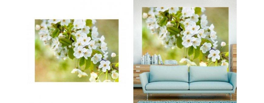 Kirsikan kukka Fototapetit saat Sisustutaulut.net kaupastamme nopealla toimituksella. Tutustu Kukka taustaseinä aiheisiin eri harrastuksista ja tilaa nyt! Ilmainen toimitus.